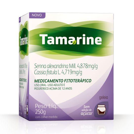 tamarine-geleia-250g-sem-acucar-principal