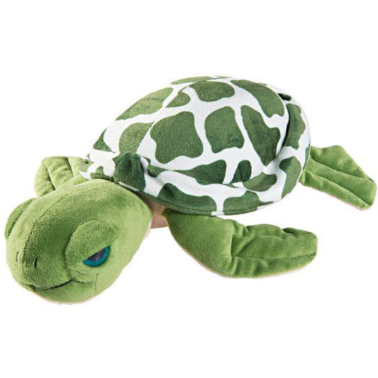 bichinho-do-brasil-tartaruga-principal