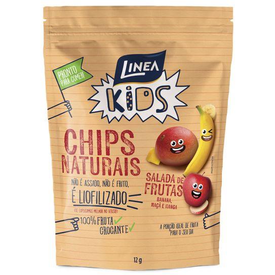 chips-linea-naturais-salada-de-frutas-12g-principal